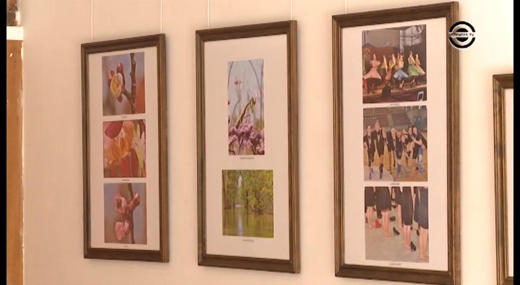 Fotókiállítás nyílt az Ifjúsági Házban